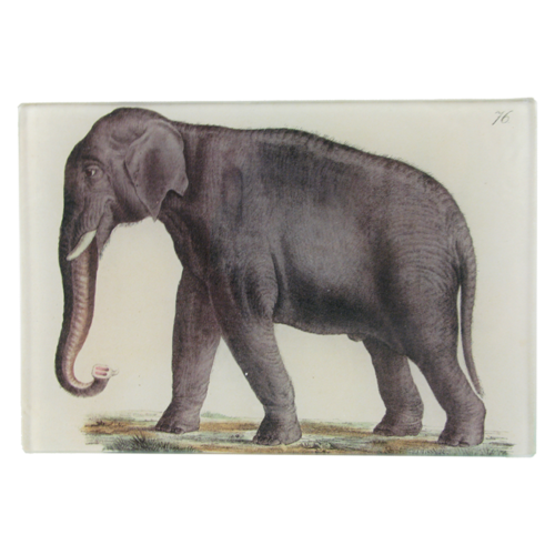Elephant 76 Mini Tray