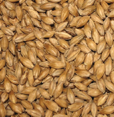 Gladfield Gladiator (dextrine) Malt