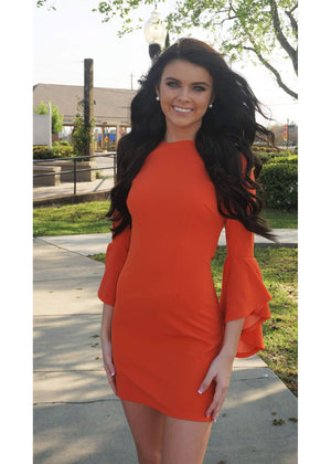 Bella Ruffle Sleeve Dress