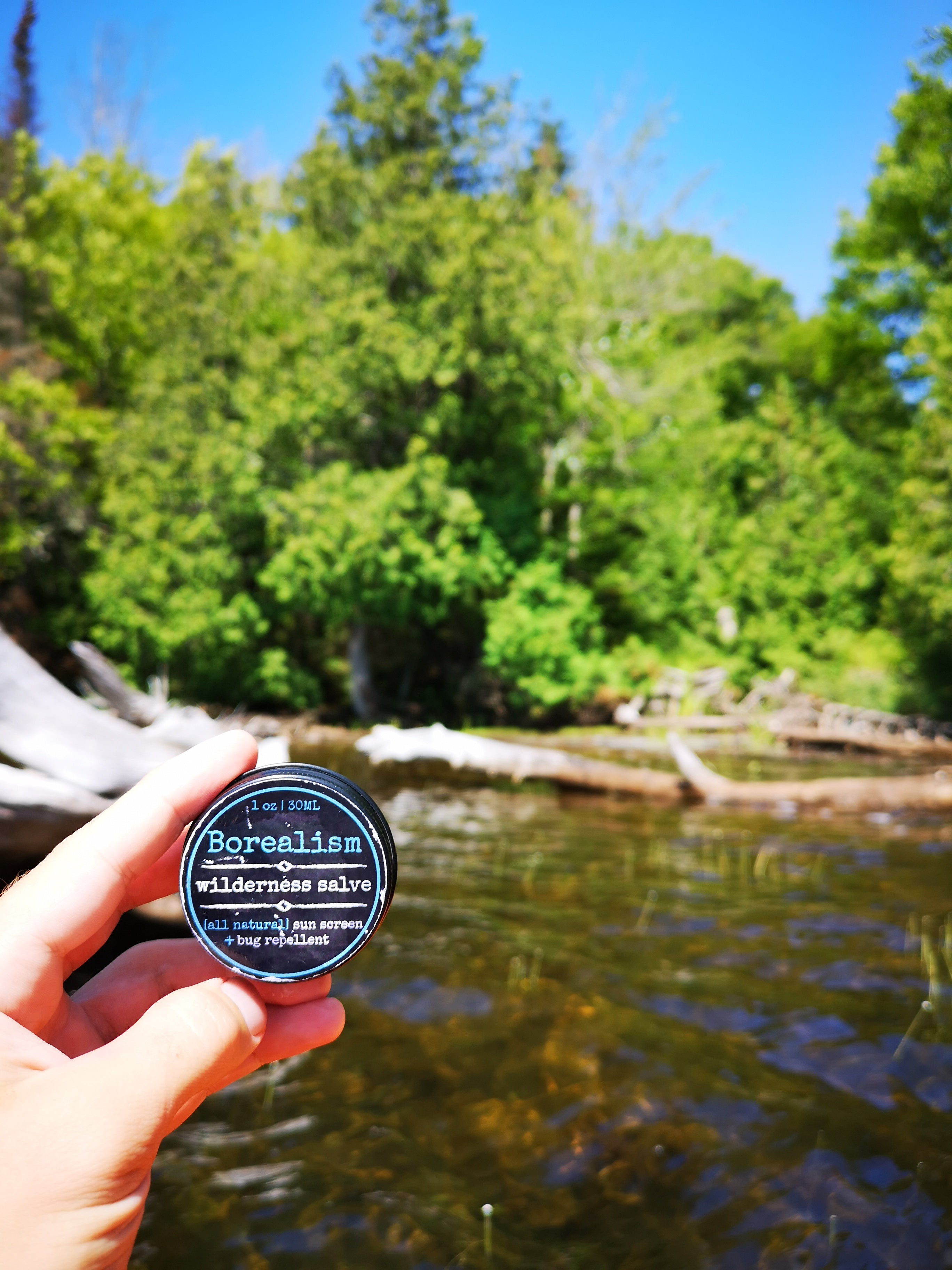 Wilderness Salve | 30mL