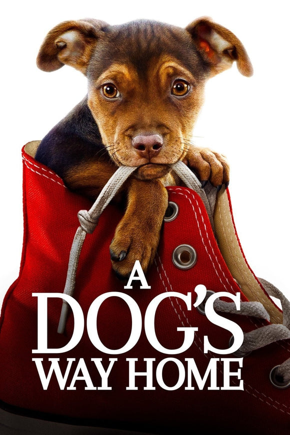 A Dog's Way Home [HDX Vudu or HD iTunes via MA] - PG