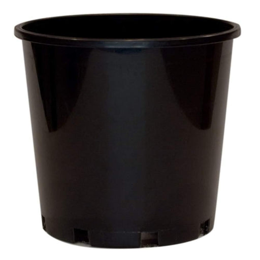 200mm Standard Black Plastic Pot - Each - Standard Pots