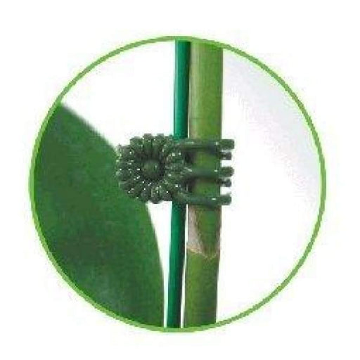 Flower Spike Clips x 10 - Medium - Bamboo Stakes