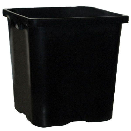 183mm Square Pot