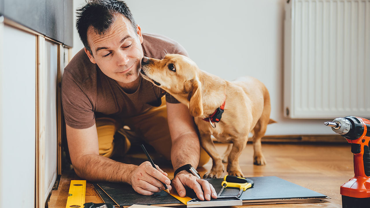 Why pets are the best personal assistants!
