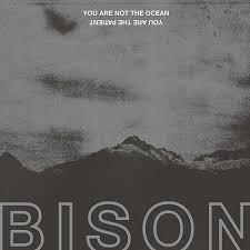 Bison - You Are Not The Ocean You Are (New Vinyl)