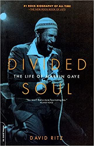 Divided Soul - The Life of Marvin Gaye