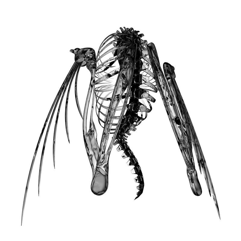 Lotic - Heterocetera (New Vinyl)