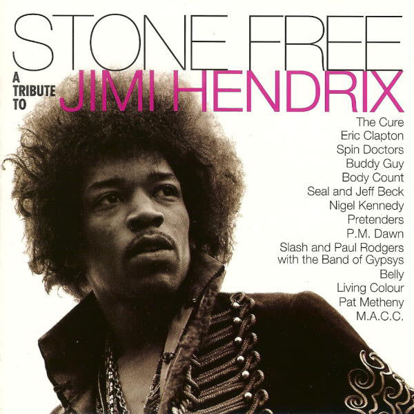 Jimi Hendrix Tribute - Stone Free: Jimi Hendrix Tribute-Black & Clear (New Vinyl)