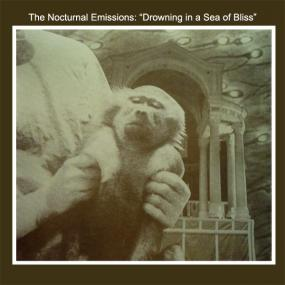 Nocturnal Emissions - Drowning In A Sea Of Bliss (RSD 2020) (New Vinyl)