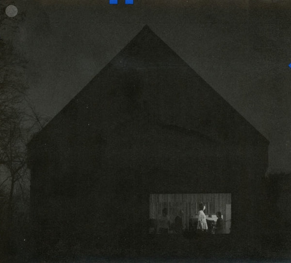 The National ‎– Sleep Well Beast (Vinyl)