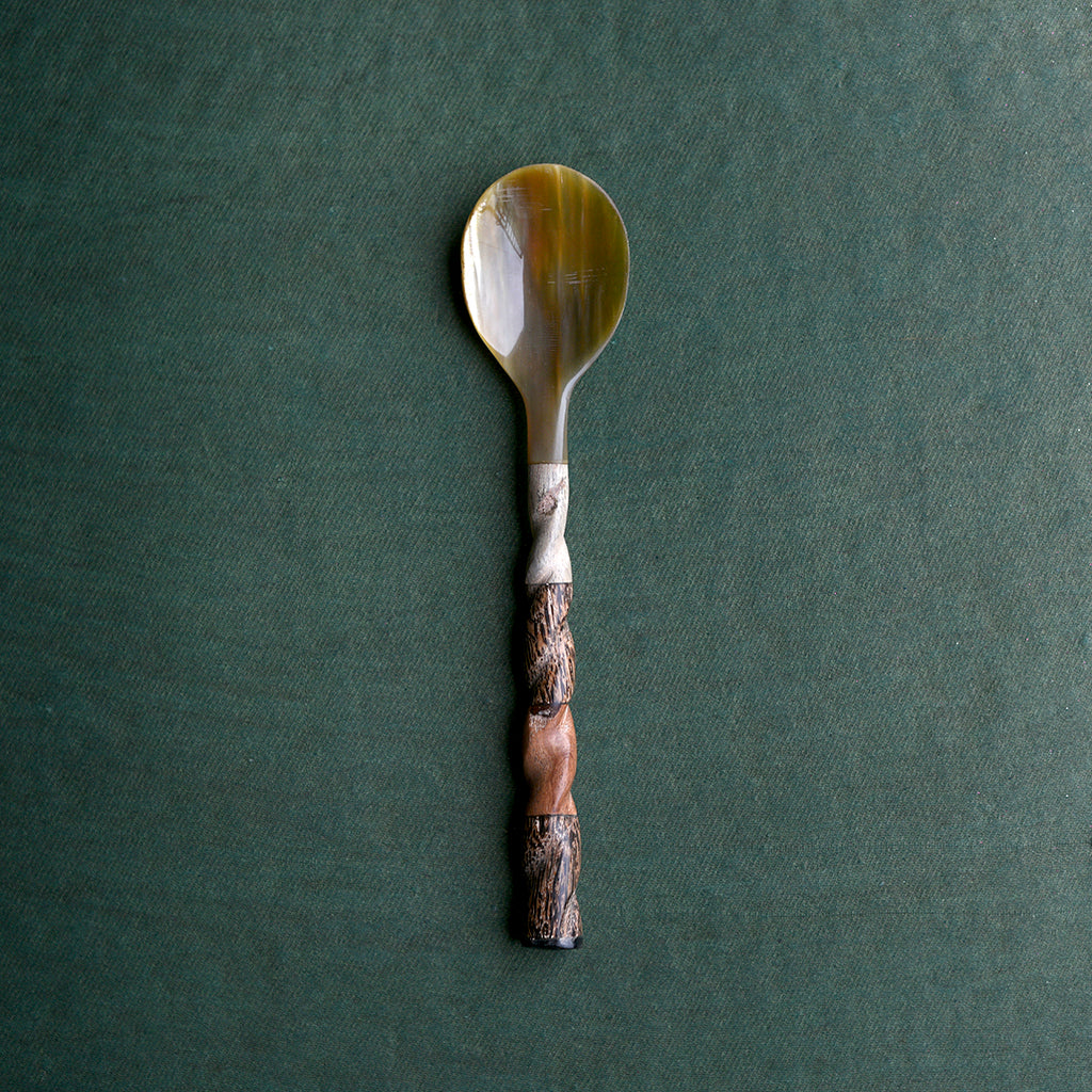 Shell and Wood Spoon