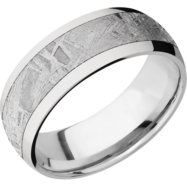 Cobalt Chrome with Meteorite Men's Wedding Ring