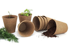 "Load image into Gallery viewer, 3"" Peat Pots 