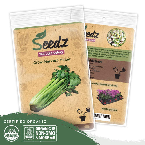 Organic Celery Seeds, APPR. 125, Tall Utah Celery, Heirloom Vegetable Seeds, Certified Organic, Non GMO, Non Hybrid, USA