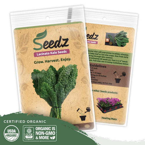 Organic Kale Seeds (APPR. 550) Lacinato Kale - Heirloom Vegetable Seeds - Certified Organic, Non-GMO, Non Hybrid - USA
