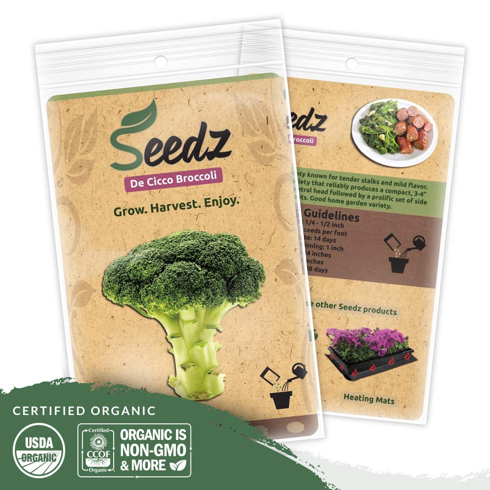 Organic Broccoli Seeds, APPR. 225, De Cicco Broccoli, Heirloom Vegetable Seeds, Certified Organic, Non GMO, Non Hybrid, USA