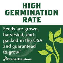 Load image into Gallery viewer, Organic Herb Seeds - Non GMO Heirloom Non Hybrid Seed (10 Culinary Varieties Pack)