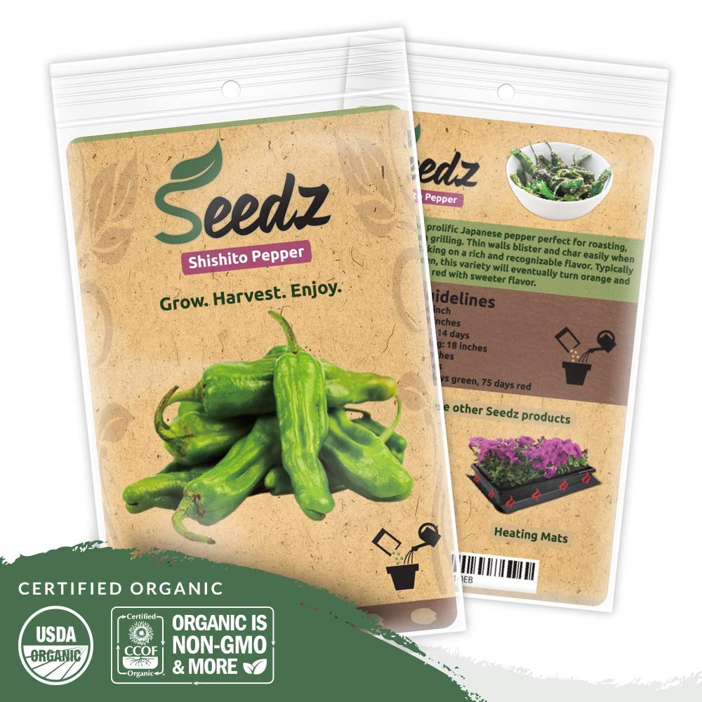 Organic Pepper Seeds (APPR. 55) Shishito Pepper - Heirloom Vegetable Seeds - Certified Organic, Non-GMO, Non Hybrid - USA