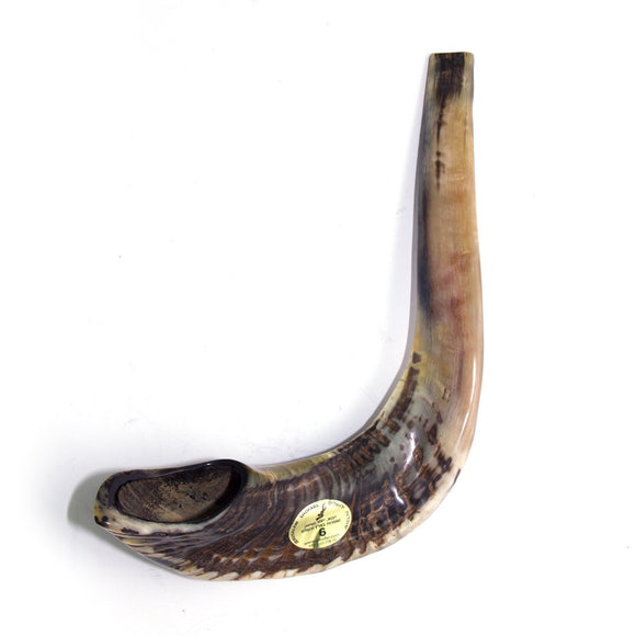 Natural Ram's Horn Shofar 45-49cm - The Peace Of God