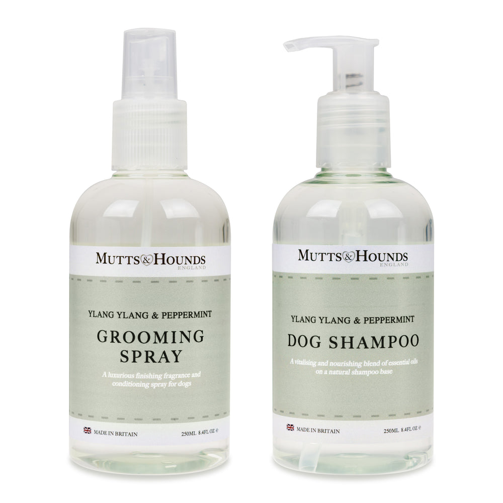 Mutts and Hound natural dog shampoo & grooming spray set- Ylang ylang and peppermint - TiaraPooches.Com