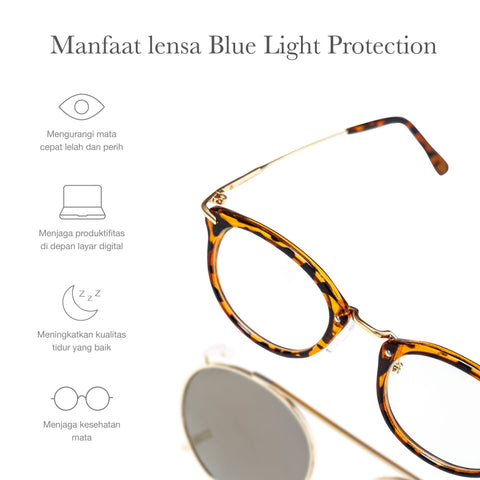 Avicenna Tortoise + Basic Blue Light Protection