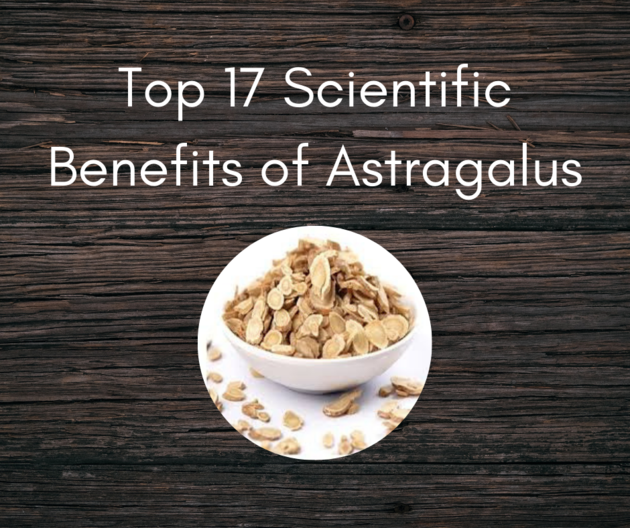 Top 17 Scientific Benefits of Astragalus [New Research]