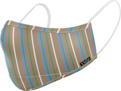 Multi Stripe printed mask