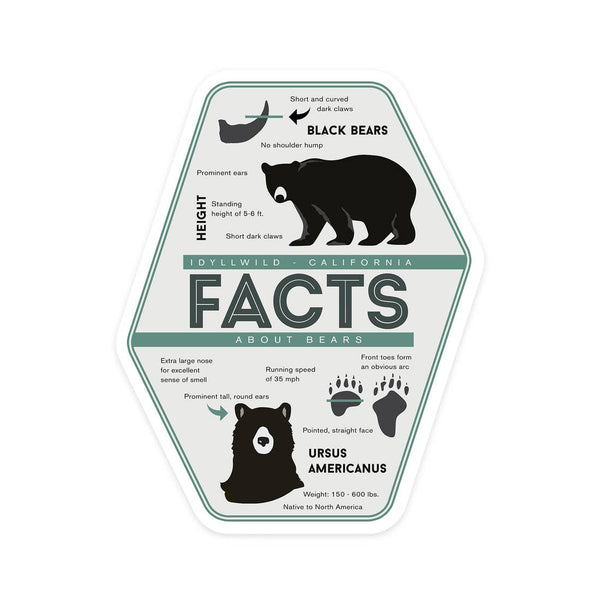 Bear Facts Idyllwild, California Sticker