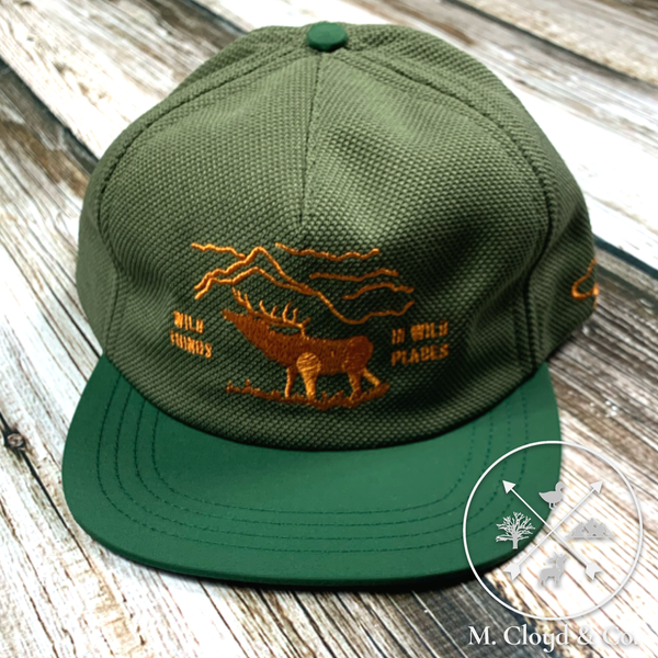The Ampal Creative Wild Things in Wild Places Green Strap Back Hat