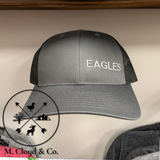 EAGLES in Silver • Slate Snapback Hat