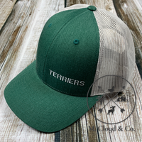 TERRIERS in White • Green Snapback Hat
