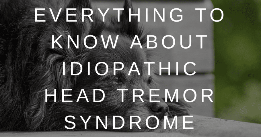 Everything to Know About Idiopathic Head Tremor Syndrome