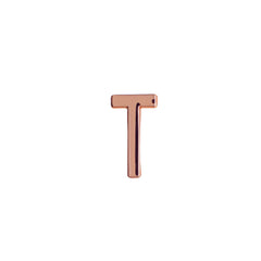 Buckle Up Rose Gold T Charm