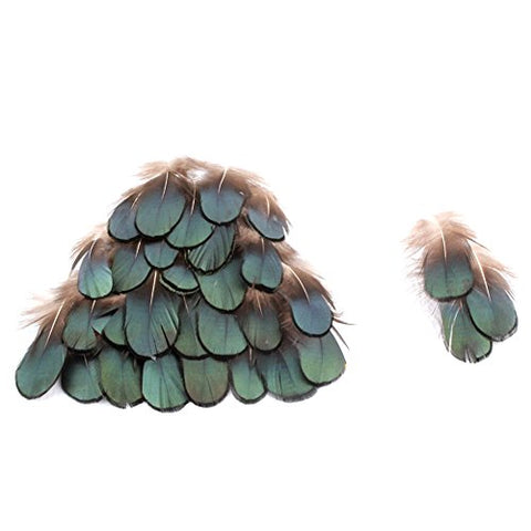 10Pcs Real Natural Peacock Feathers Green Bronze Iridescent Plumage Feathers For Diy Wedding Sewing Crafts Costumes Decoration (Green Bronze)