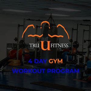 4 Day Workout Program