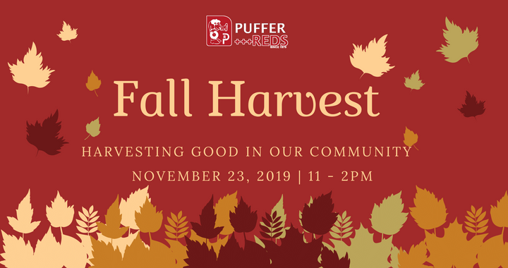Fall Harvest: Harvesting Good in Our Community