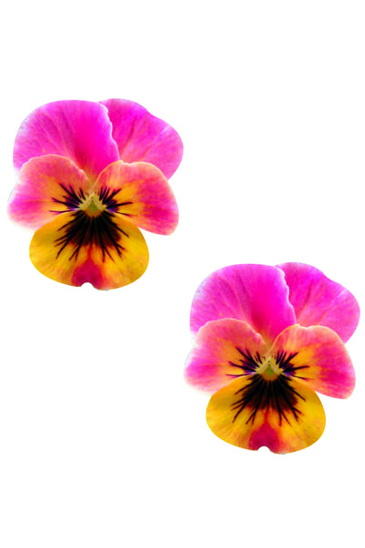 Freaking Awesome Flower Pansy Nipztix Pasties