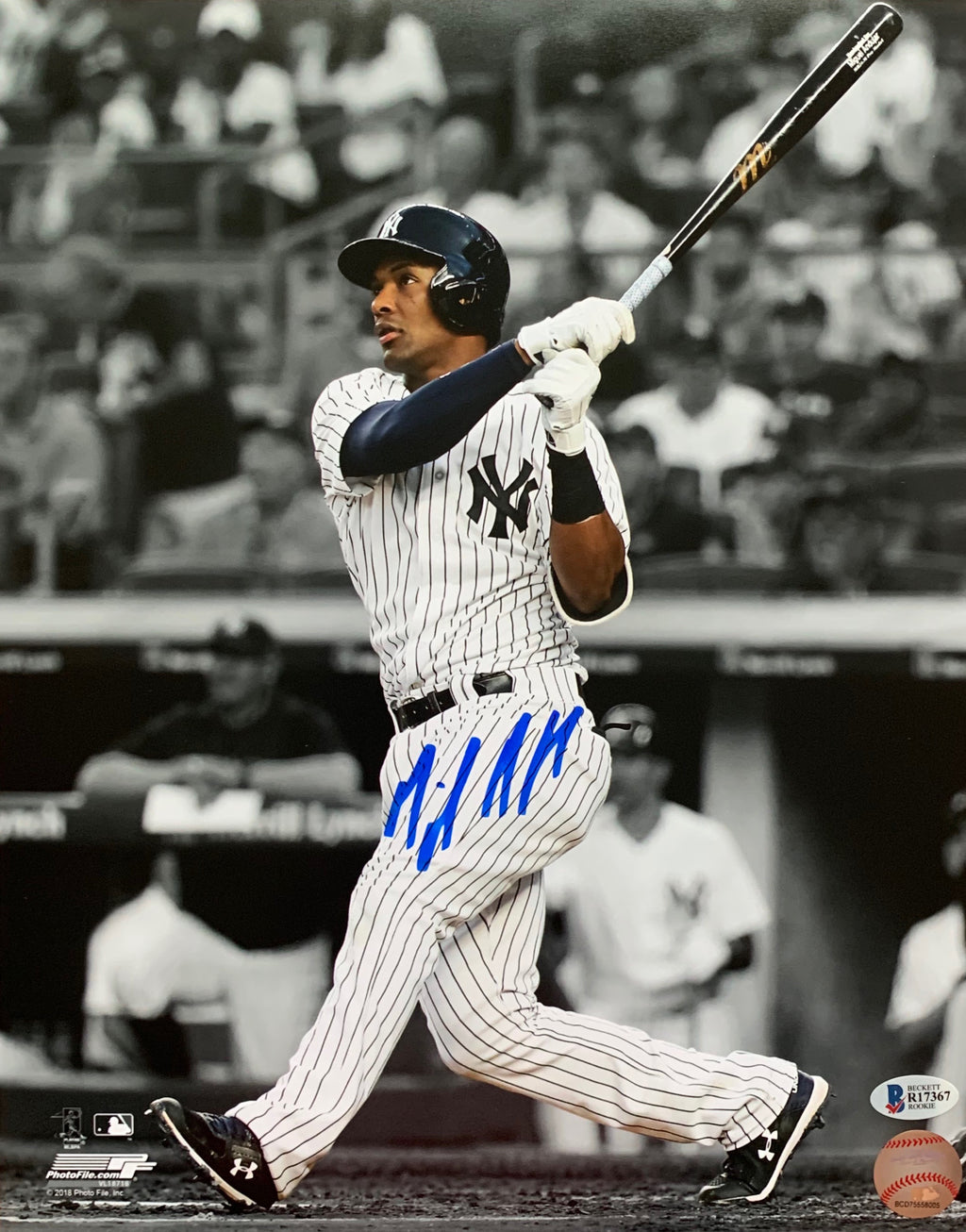 Miguel Andujar autographed signed 11x14 photo MLB New York Yankees Beckett COA