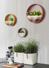 Round Wall Planter