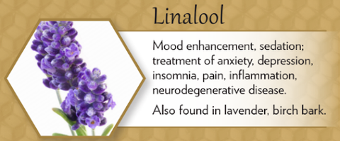 linalool terpene for cold and flu health