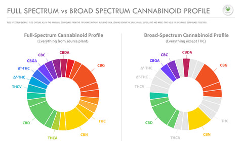 the differences between full spectrum and broad spectrum CBD in a chart