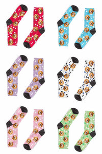 6in1_Hundesocken