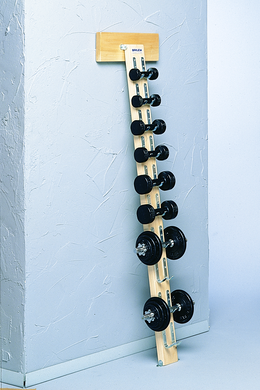 Bailey 700 Series Wall Mount Dumbbell Rack