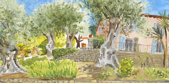 Olive Trees and Villa, Provence