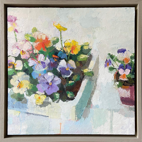 Helen Riches_Potting Violas 2