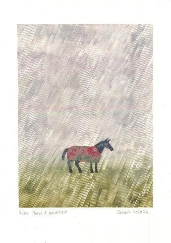 Horse and Weather ed. of 100