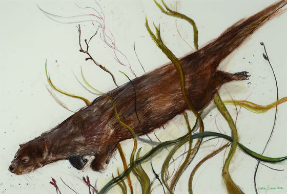 Lara Scouller Diving Otter