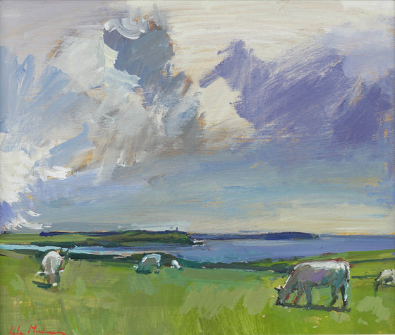 Cows at Pentire II