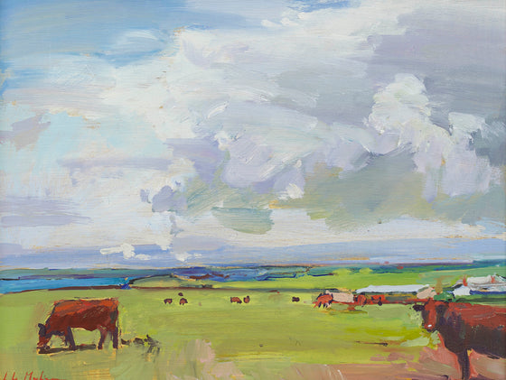 Cows at Pentire I